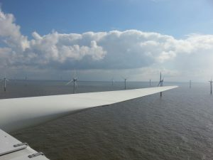 View of an Offshore Windfarm